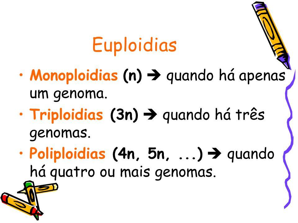Euploidias Monoploidias (n) quando há apenas um genoma. Triploidias (3n) quando há três genomas. Poliploidias (4n, 5n,...) quando há quatro ou mais ge
