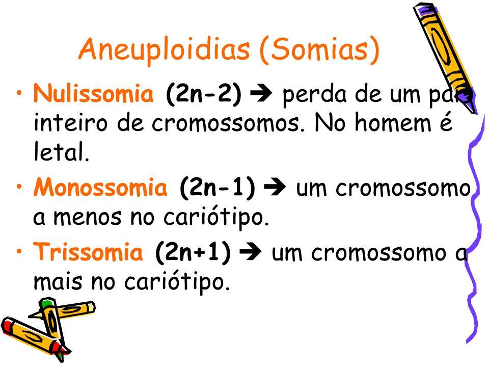 Aneuploidias (Somias) Nulissomia (2n-2) perda de um par inteiro de cromossomos. No homem é letal. Monossomia (2n-1) um cromossomo a menos no cariótipo