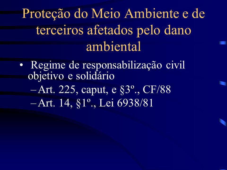 Proteção do Meio Ambiente e de terceiros afetados pelo dano ambiental Regime de responsabilização civil objetivo e solidário –Art. 225, caput, e §3º.,