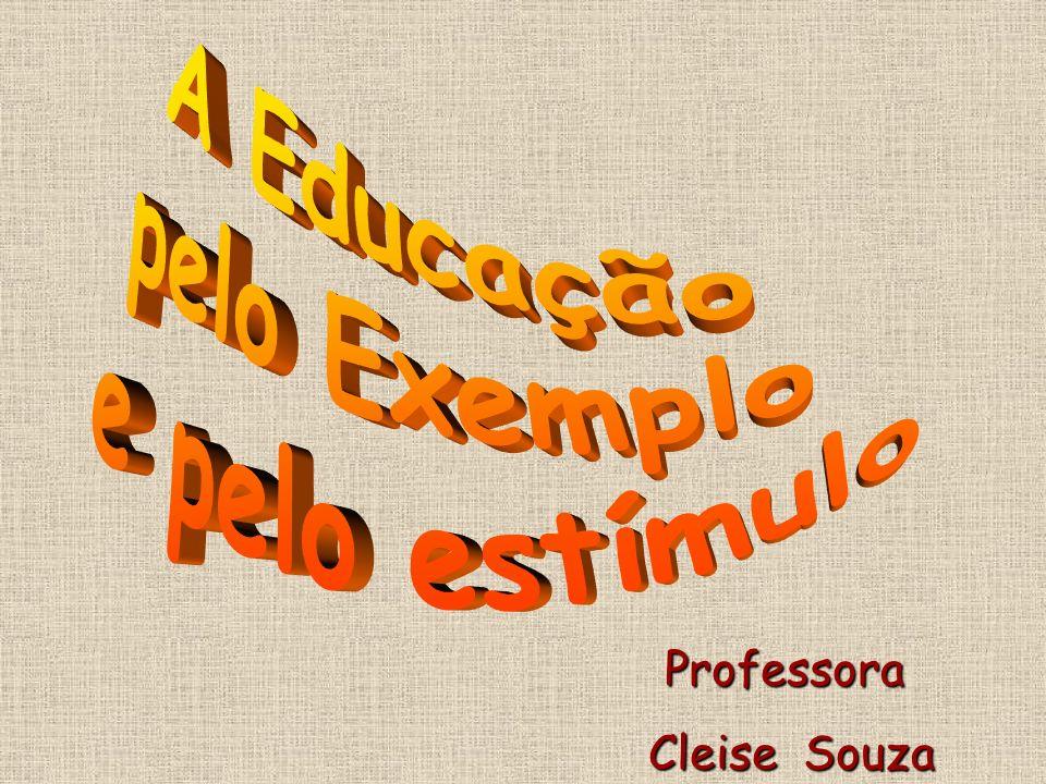 Professora Cleise Souza Cleise Souza