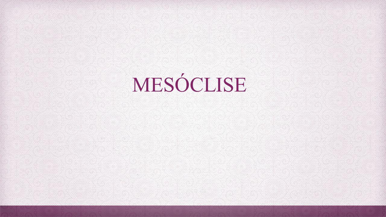 Mesóclise Quando o pronome está no meio do verbo.Ex.: Entregar-te-ei os documentos hoje.