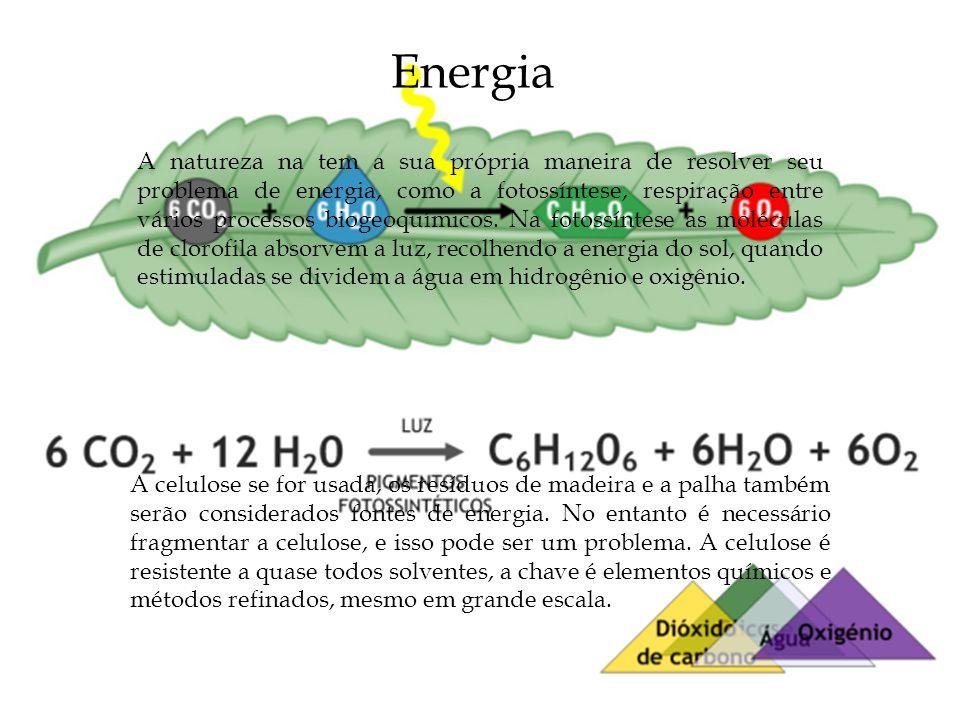 Energia A natureza na tem a sua própria maneira de resolver seu problema de energia, como a fotossíntese, respiração entre vários processos biogeoquím