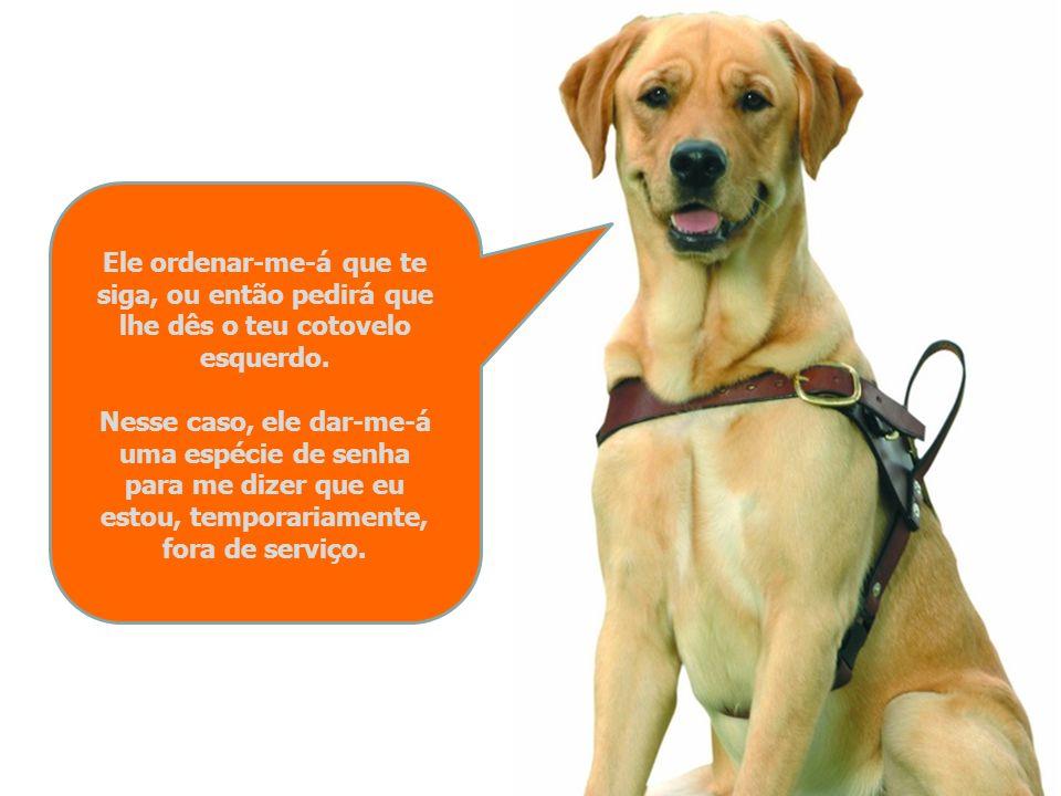 Se um cego com um cão guia te pedir ajuda, aproxima-te dele pelo lado direito para que eu possa manter-me à esquerda.