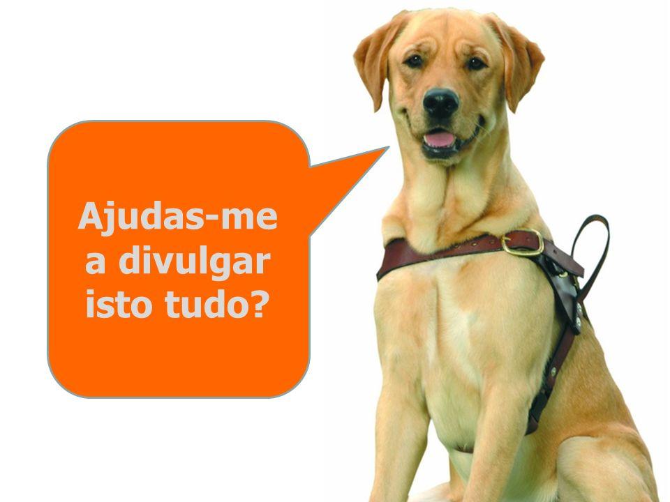 Nos locais de trabalho, os donos de cães guias estão habilitados a exercer as suas funções connosco ao seu lado. De acordo com o treino que recebemos,