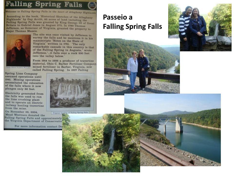 Passeio a Falling Spring Falls
