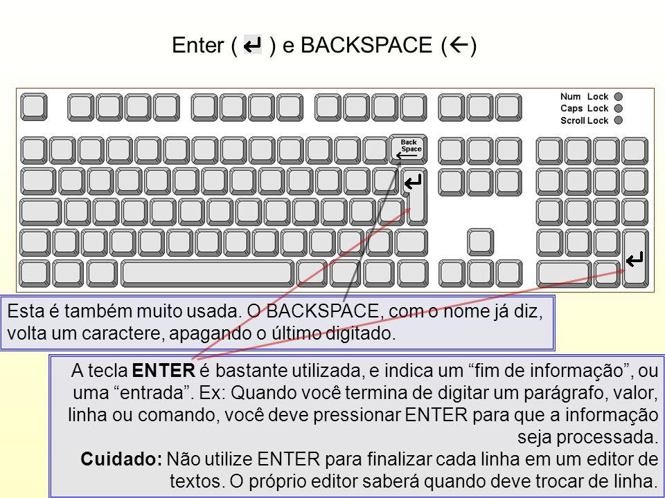 Enter ( ) e BACKSPACE ( ) A tecla ENTER é bastante utilizada, e indica um fim de informação, ou uma entrada. Ex: Quando você termina de digitar um par