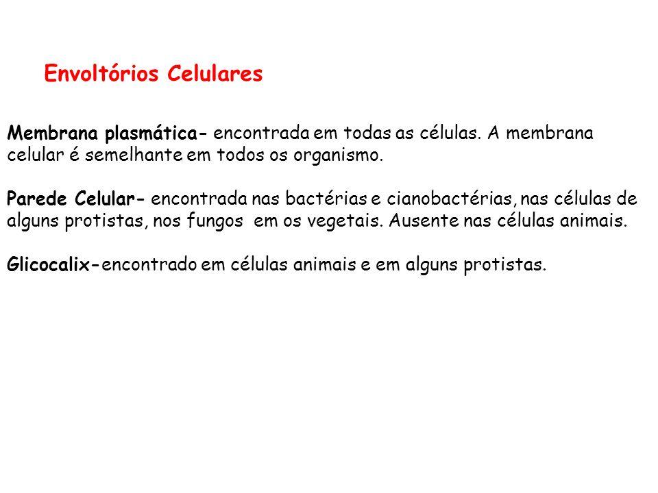 Envoltórios Celulares Membrana plasmática- encontrada em todas as células.