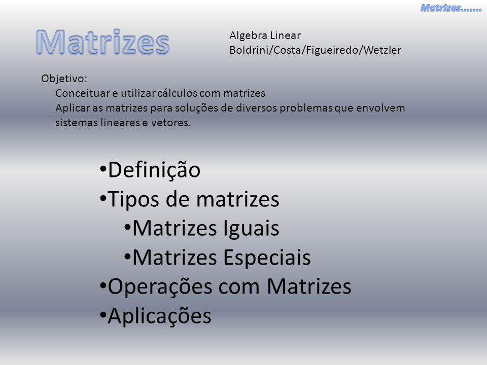 Algebra Linear Boldrini/Costa/Figueiredo/Wetzler Objetivo: Conceituar e utilizar cálculos com matrizes Aplicar as matrizes para soluções de diversos p