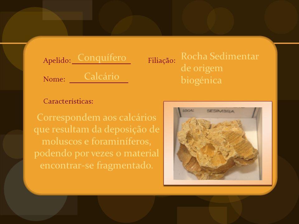 Apelido: Nome: Características: Filiação: Correspondem aos calcários que resultam da deposição de moluscos e foraminíferos, podendo por vezes o material encontrar-se fragmentado.
