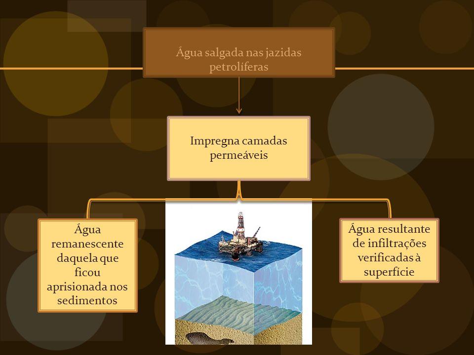Água salgada nas jazidas petrolíferas Impregna camadas permeáveis Água resultante de infiltrações verificadas à superfície Água remanescente daquela que ficou aprisionada nos sedimentos