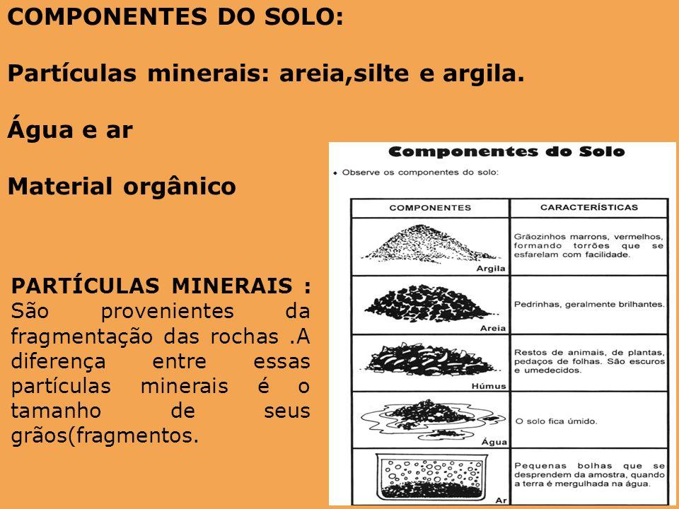 COMPONENTES DO SOLO: Partículas minerais: areia,silte e argila. Água e ar Material orgânico PARTÍCULAS MINERAIS : São provenientes da fragmentação das