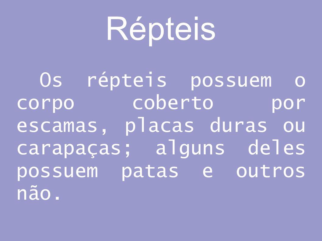 Répteis Os répteis possuem o corpo coberto por escamas, placas duras ou carapaças; alguns deles possuem patas e outros não.