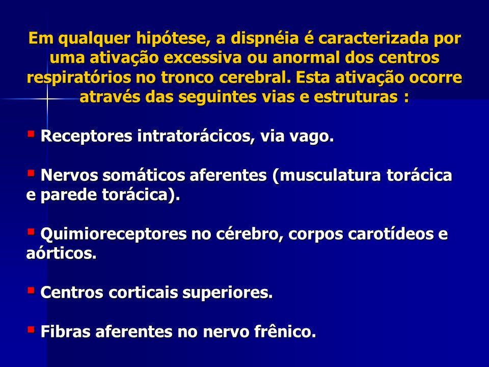 Etiologia A dispnéia pode ser atribuída a causas : Pulmonares Pulmonares Cardíacas Cardíacas Metabólicas (acidoses diabética e urêmica) Metabólicas (acidoses diabética e urêmica) Condições que alteram a ventilação (gravidez, obesidade, anemia, ascite).