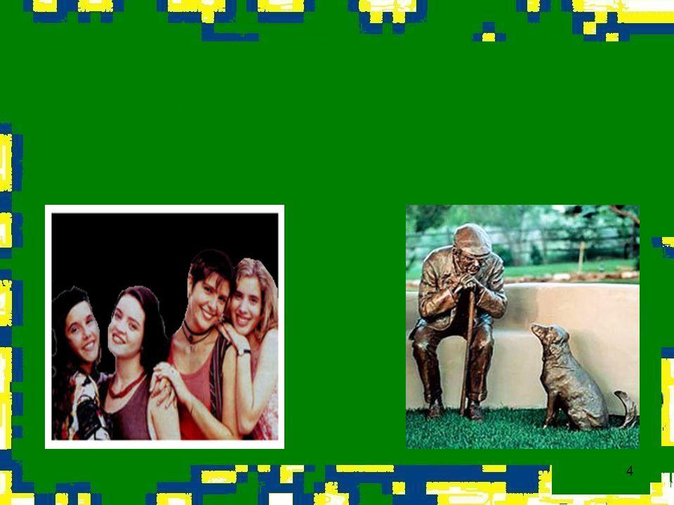 35 Avaliação: Þprogramas e campanhas são lançadas e sustentadas com freqüência por diferentes instituições e órgãos governamentais; 1993 - Conferencia Mundial de Viena (que visava estimular a educação pela paz e tolerância) propôs a inclusão de direitos humanos nos currículos escolares; SEDH, em parceria com o CNDI elaborou o Plano de Ação para o Enfrentamento da Violência contra a Pessoa Idosa; Þexistem diversas campanhas, programas e entidades de combate à violência contra a infância e a juventude, como o Comitê Nacional de Enfrentamento da Violência Sexual contra Crianças e Adolescentes e o Projeto Escola que Protege, criado pelo MEC e intermediado pela SECAD, que busca a capacitação de professores para enfrentar os desafios da escola atual;