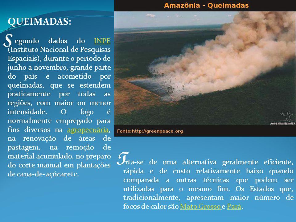 DESMATAMENTOS processo de desflorestamento ocorre a milhares de anos.