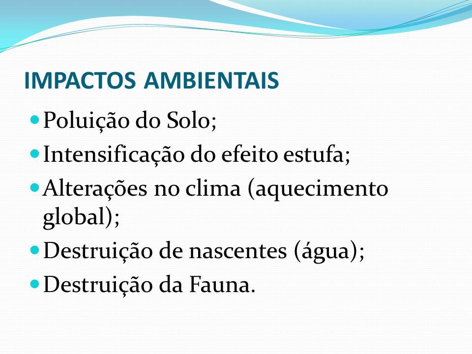 IMPACTOS AMBIENTAIS Poluição do Solo; Intensificação do efeito estufa; Alterações no clima (aquecimento global); Destruição de nascentes (água); Destr