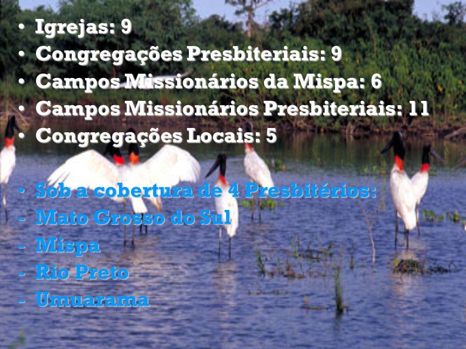 Igrejas: 9Igrejas: 9 Congregações Presbiteriais: 9Congregações Presbiteriais: 9 Campos Missionários da Mispa: 6Campos Missionários da Mispa: 6 Campos