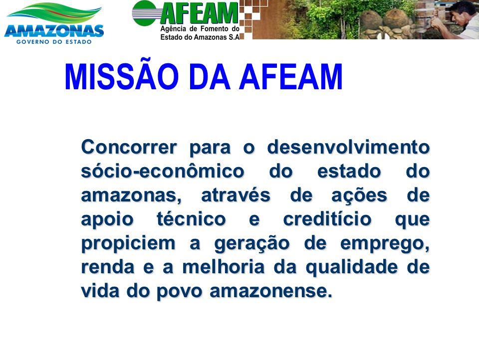 MISSÃO DA AFEAM Concorrer para o desenvolvimento sócio-econômico do estado do amazonas, através de ações de apoio técnico e creditício que propiciem a