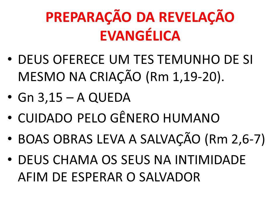 PREPARAÇÃO DA REVELAÇÃO EVANGÉLICA DEUS OFERECE UM TES TEMUNHO DE SI MESMO NA CRIAÇÃO (Rm 1,19-20). Gn 3,15 – A QUEDA CUIDADO PELO GÊNERO HUMANO BOAS