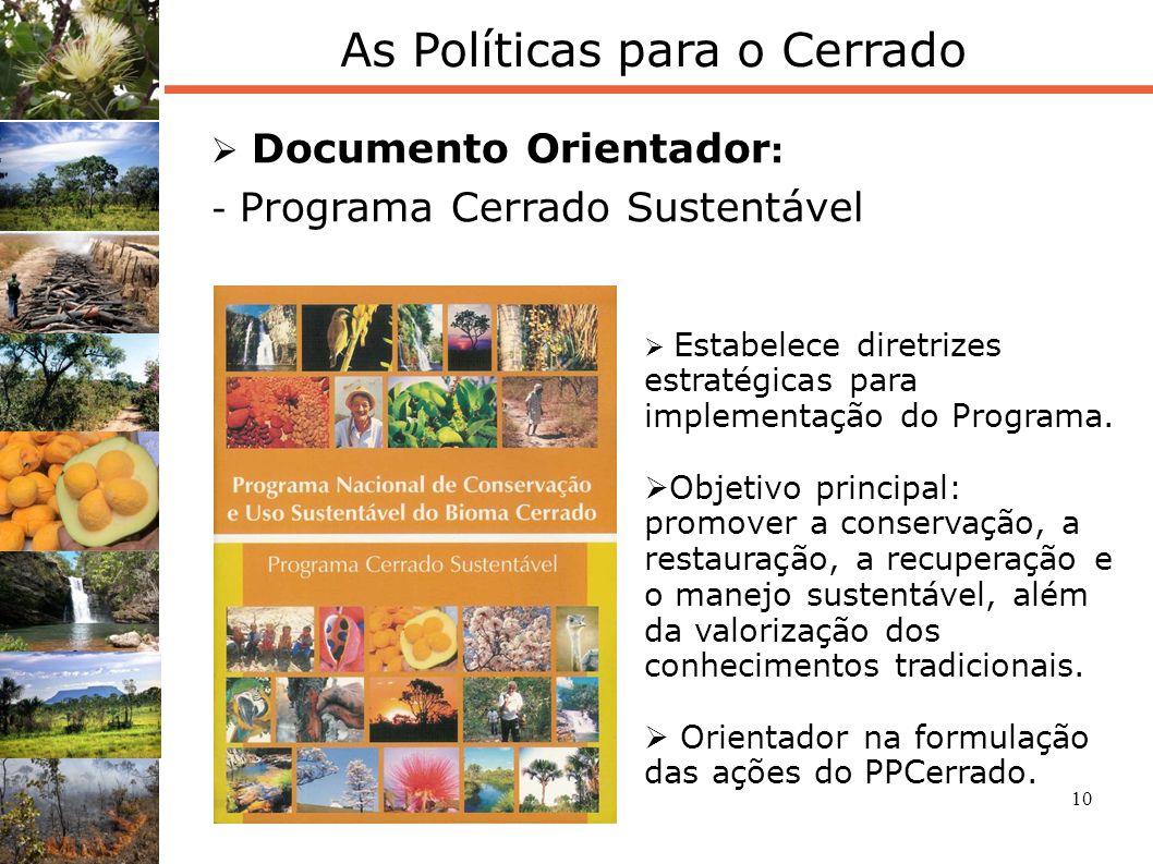 10 As Políticas para o Cerrado Documento Orientador : - Programa Cerrado Sustentável Estabelece diretrizes estratégicas para implementação do Programa
