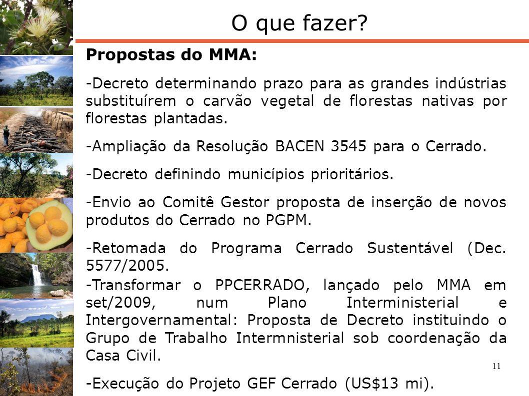 11 O que fazer? Propostas do MMA: -Decreto determinando prazo para as grandes indústrias substituírem o carvão vegetal de florestas nativas por flores
