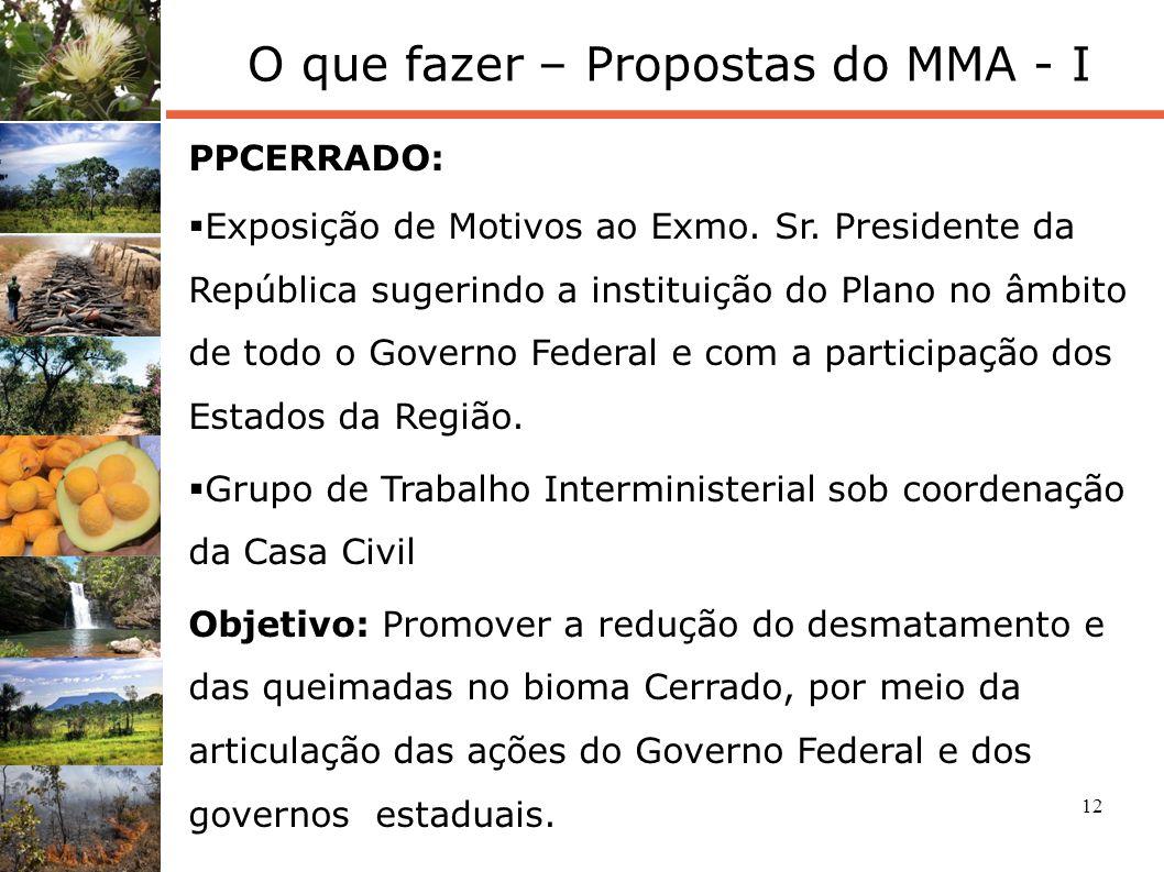 12 O que fazer – Propostas do MMA - I PPCERRADO: Exposição de Motivos ao Exmo. Sr. Presidente da República sugerindo a instituição do Plano no âmbito