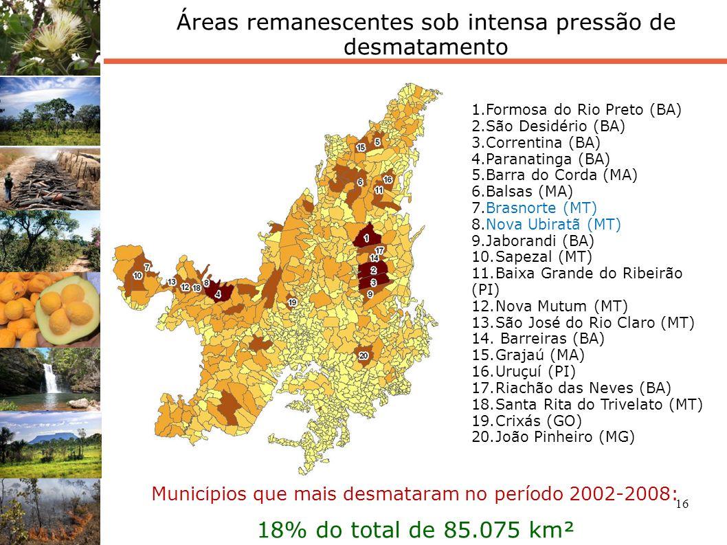 16 Municípios que mais desmataram no período 2002-2008: 18% do total de 85.075 km² 1.Formosa do Rio Preto (BA) 2.São Desidério (BA) 3.Correntina (BA)