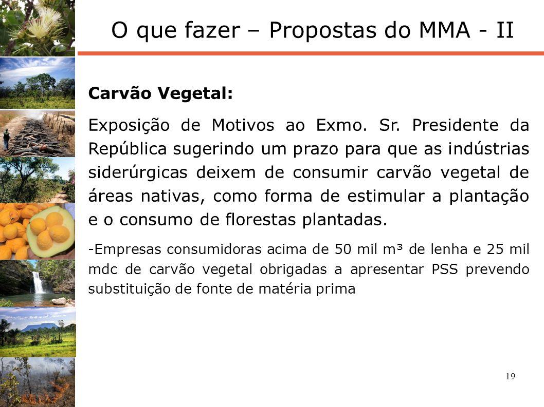 19 O que fazer – Propostas do MMA - II Carvão Vegetal: Exposição de Motivos ao Exmo. Sr. Presidente da República sugerindo um prazo para que as indúst