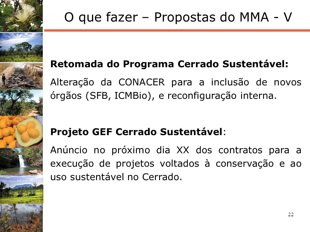 22 O que fazer – Propostas do MMA - V Retomada do Programa Cerrado Sustentável: Alteração da CONACER para a inclusão de novos órgãos (SFB, ICMBio), e