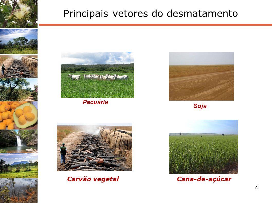 6 Principais vetores do desmatamento Carvão vegetalCana-de-açúcar Soja Pecuária