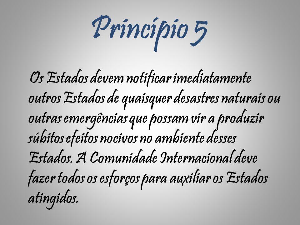 Princípio 5 Os Estados devem notificar imediatamente outros Estados de quaisquer desastres naturais ou outras emergências que possam vir a produzir sú