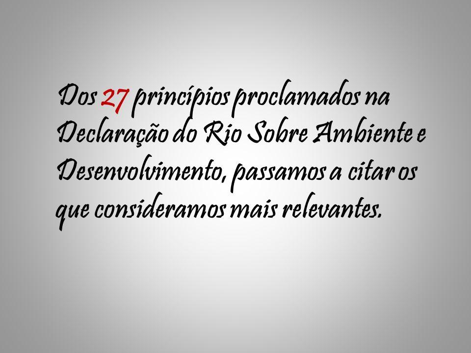 Dos 27 princípios proclamados na Declaração do Rio Sobre Ambiente e Desenvolvimento, passamos a citar os que consideramos mais relevantes.