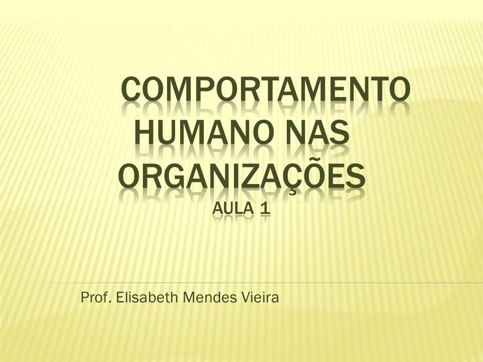 Prof. Elisabeth Mendes Vieira