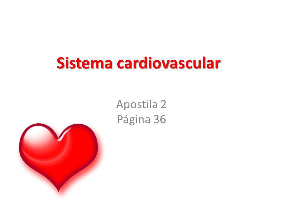 Sistema cardiovascular Apostila 2 Página 36