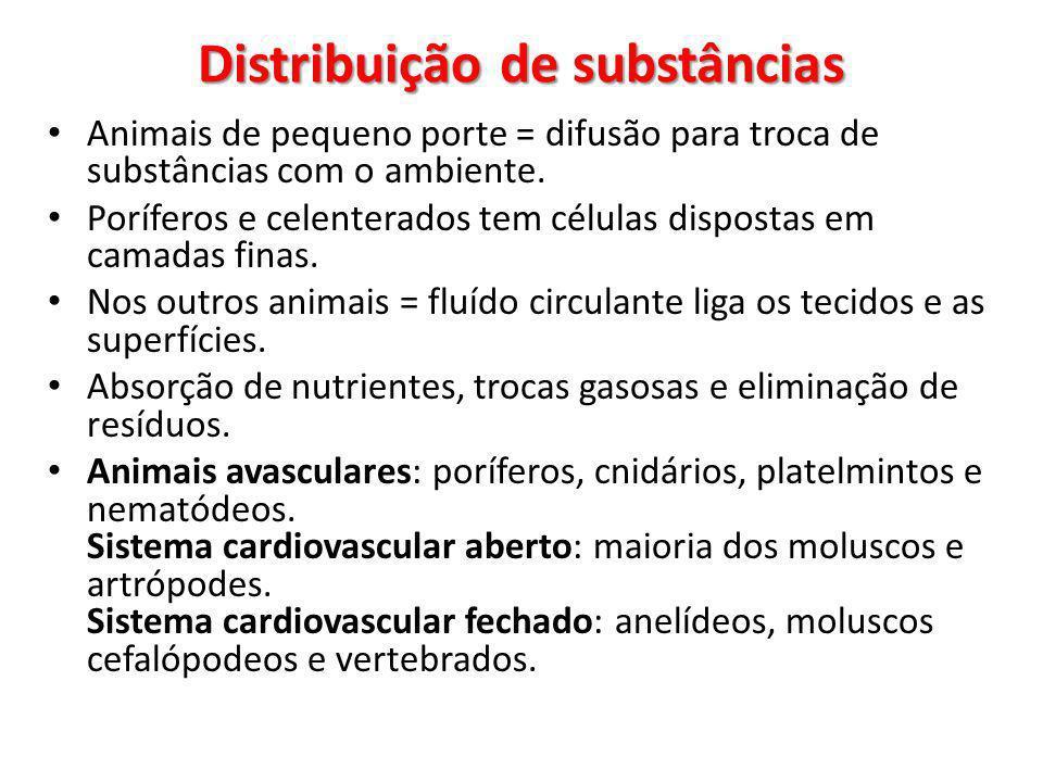 Distribuição de substâncias Animais de pequeno porte = difusão para troca de substâncias com o ambiente.
