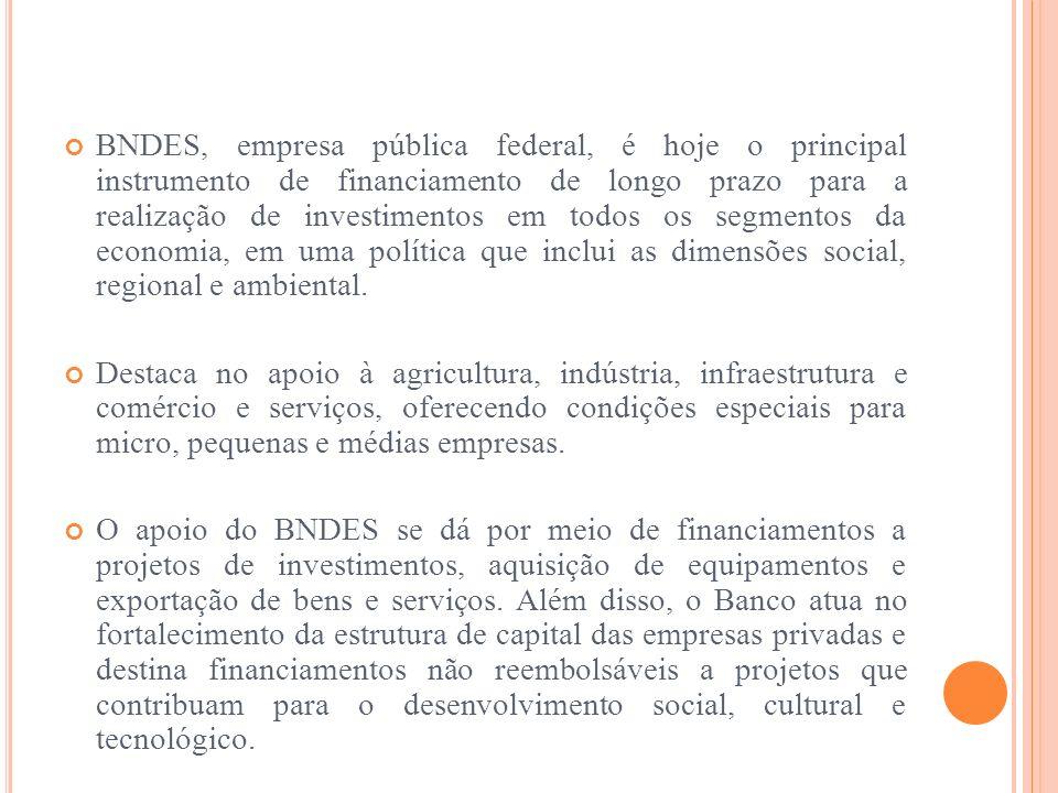 BNDES, empresa pública federal, é hoje o principal instrumento de financiamento de longo prazo para a realização de investimentos em todos os segmento