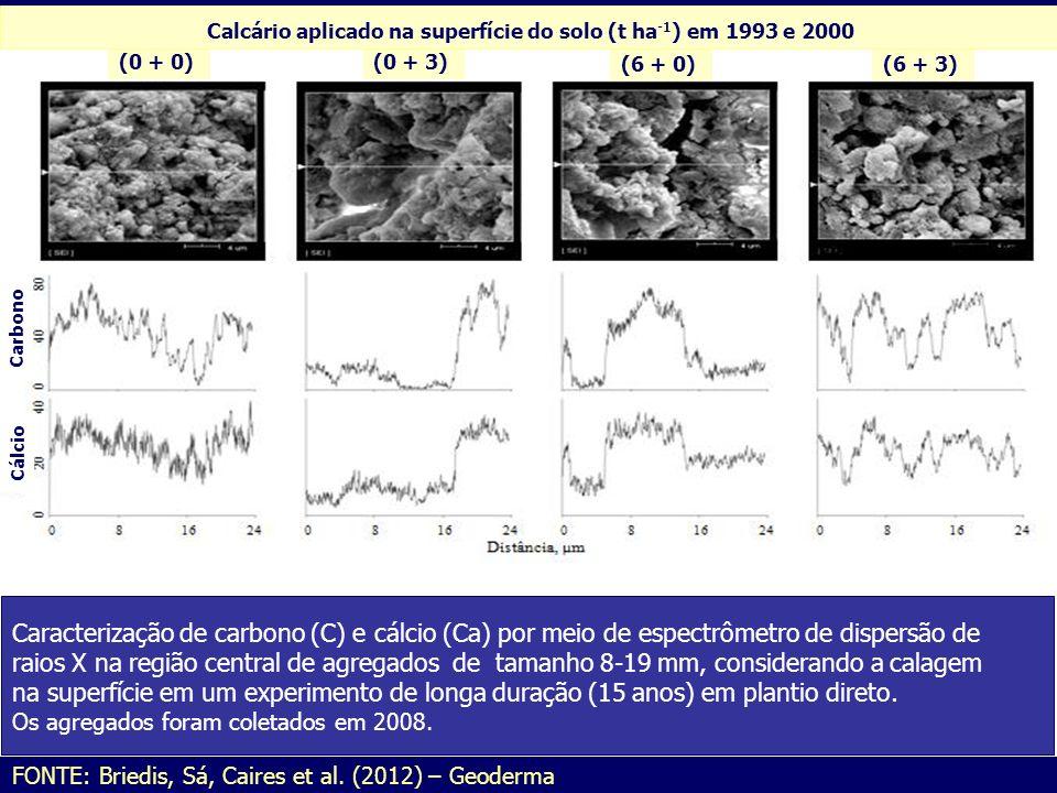 Caracterização de carbono (C) e cálcio (Ca) por meio de espectrômetro de dispersão de raios X na região central de agregados de tamanho 8-19 mm, consi