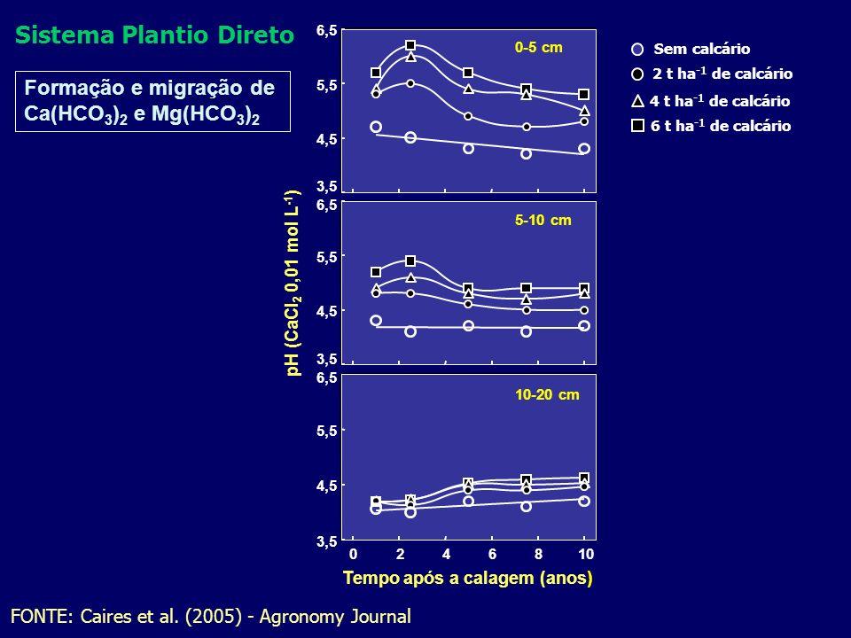 FONTE: Caires et al. (2005) - Agronomy Journal Sem calcário 2 t ha -1 de calcário 4 t ha -1 de calcário 6 t ha -1 de calcário Formação e migração de C