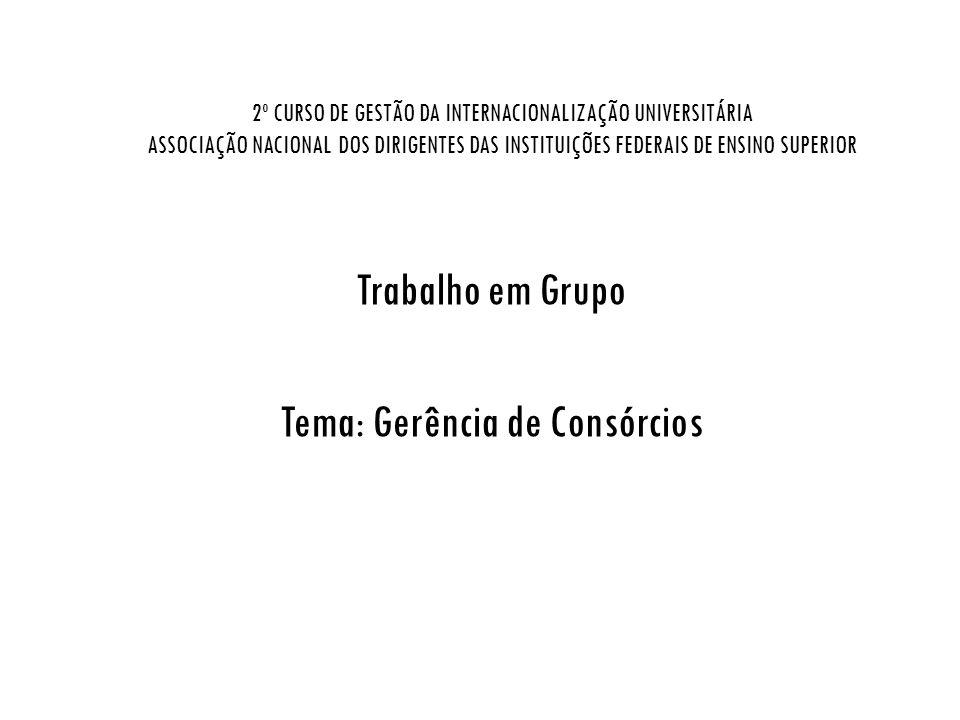 2º CURSO DE GESTÃO DA INTERNACIONALIZAÇÃO UNIVERSITÁRIA ASSOCIAÇÃO NACIONAL DOS DIRIGENTES DAS INSTITUIÇÕES FEDERAIS DE ENSINO SUPERIOR Trabalho em Gr