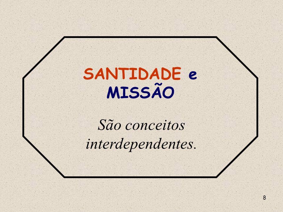 8 SANTIDADE e MISSÃO São conceitos interdependentes.