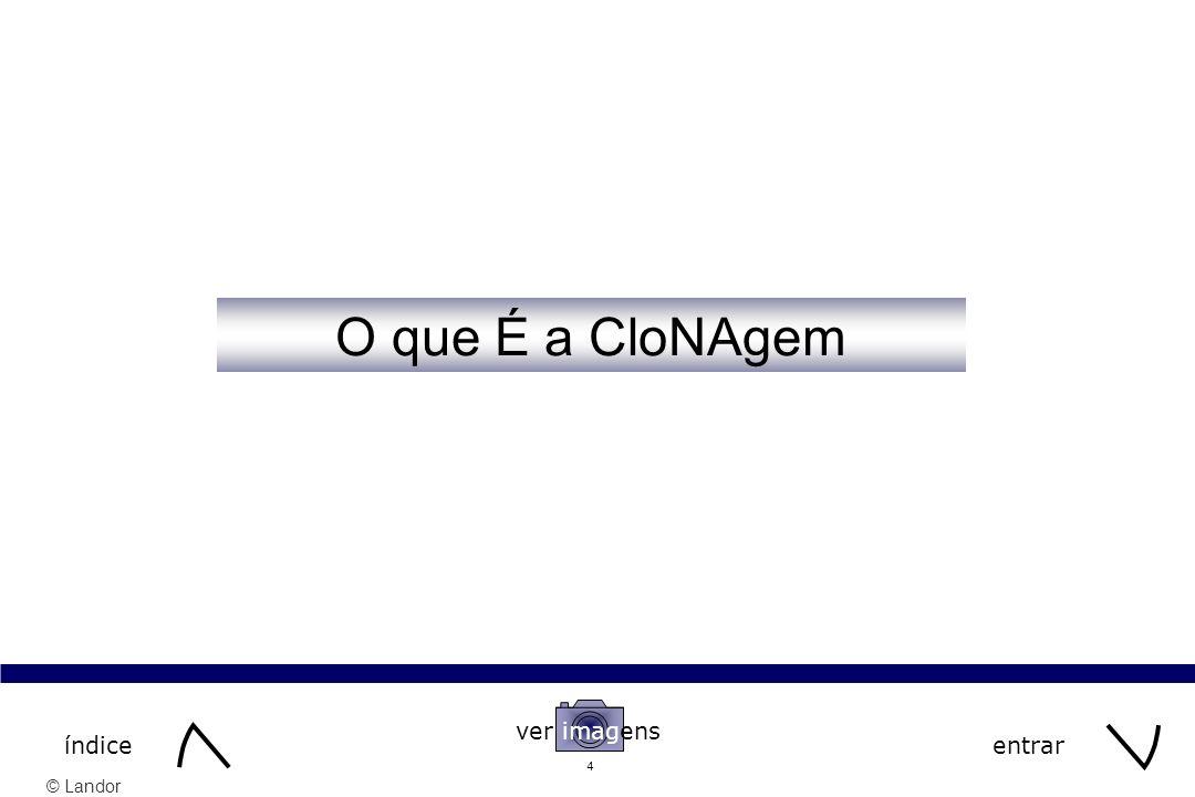 © Landor 45 continuar O que é a Clonagem O que é a Clonagem