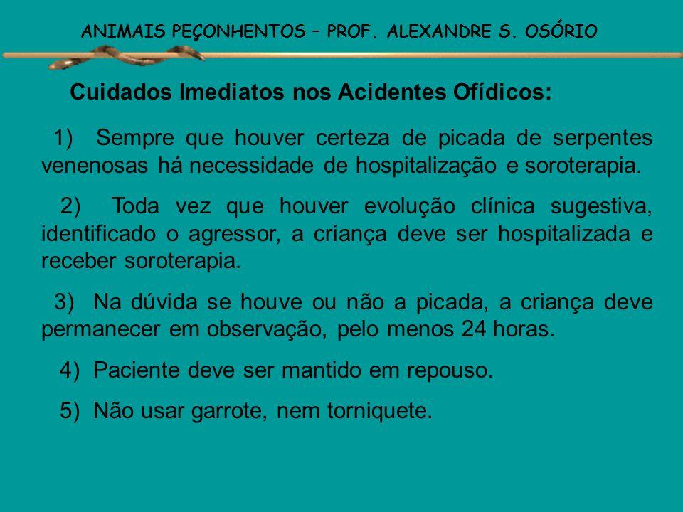 ANIMAIS PEÇONHENTOS – PROF. ALEXANDRE S. OSÓRIO Envenenamento Elapídico – Corais ( 0,7% dos acidentes) Principais sintomas : -dificuldade de abrir os