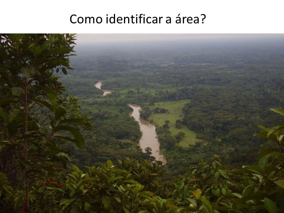 Como identificar a área?