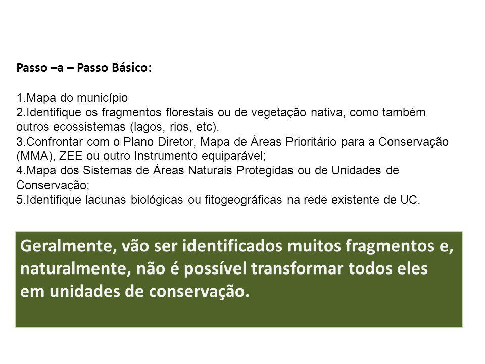 Passo –a – Passo Básico: 1.Mapa do município 2.Identifique os fragmentos florestais ou de vegetação nativa, como também outros ecossistemas (lagos, ri