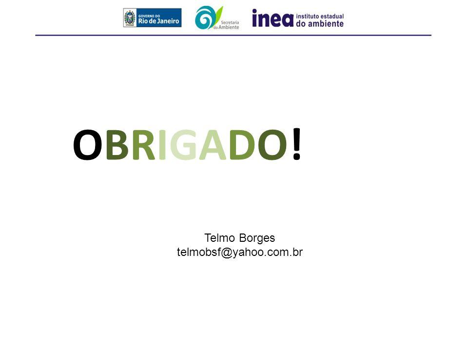 OBRIGADO!OBRIGADO! Telmo Borges telmobsf@yahoo.com.br