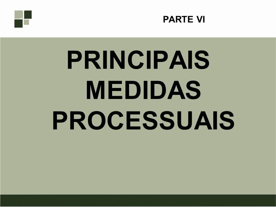 PARTE VI PRINCIPAIS MEDIDAS PROCESSUAIS