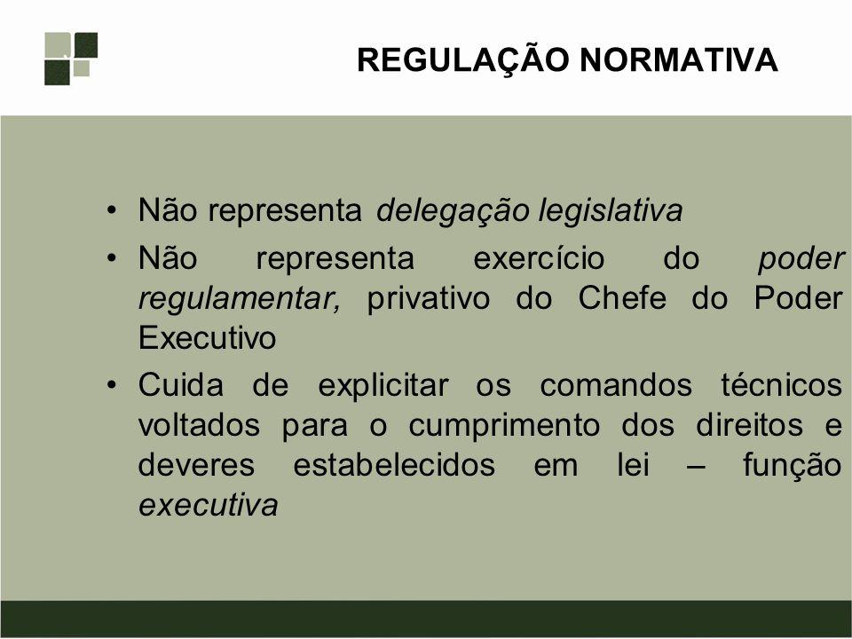 REGULAÇÃO NORMATIVA Não representa delegação legislativa Não representa exercício do poder regulamentar, privativo do Chefe do Poder Executivo Cuida d