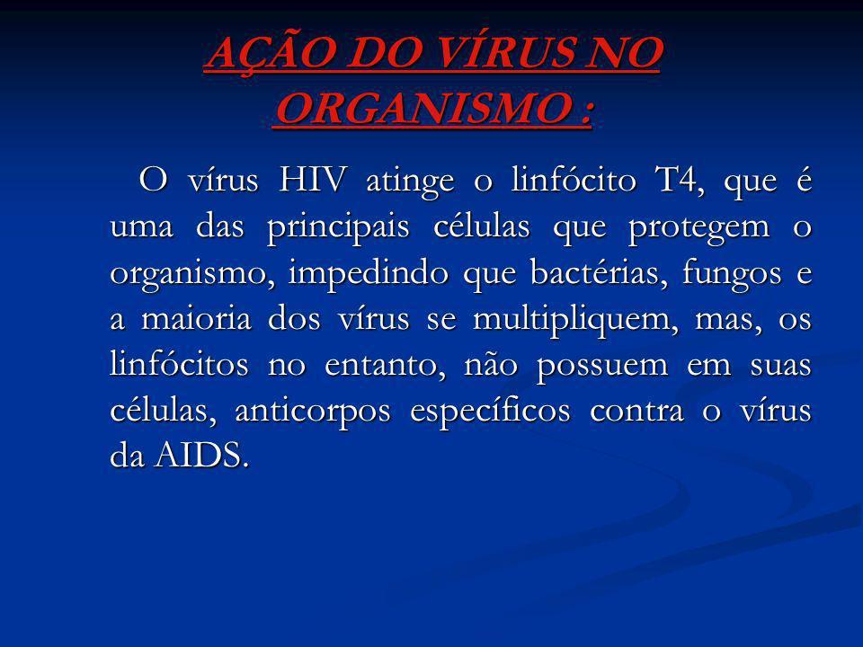Acidentes hospitalares (punções acidentais, infecções, instrumental sem a devida desinfecção); Acidentes hospitalares (punções acidentais, infecções,