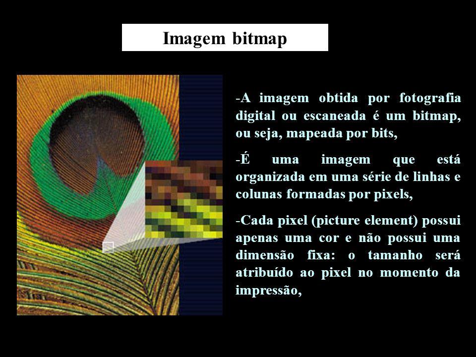 O tamanho de uma imagem digital está definido no número de linhas e colunas que a forma.
