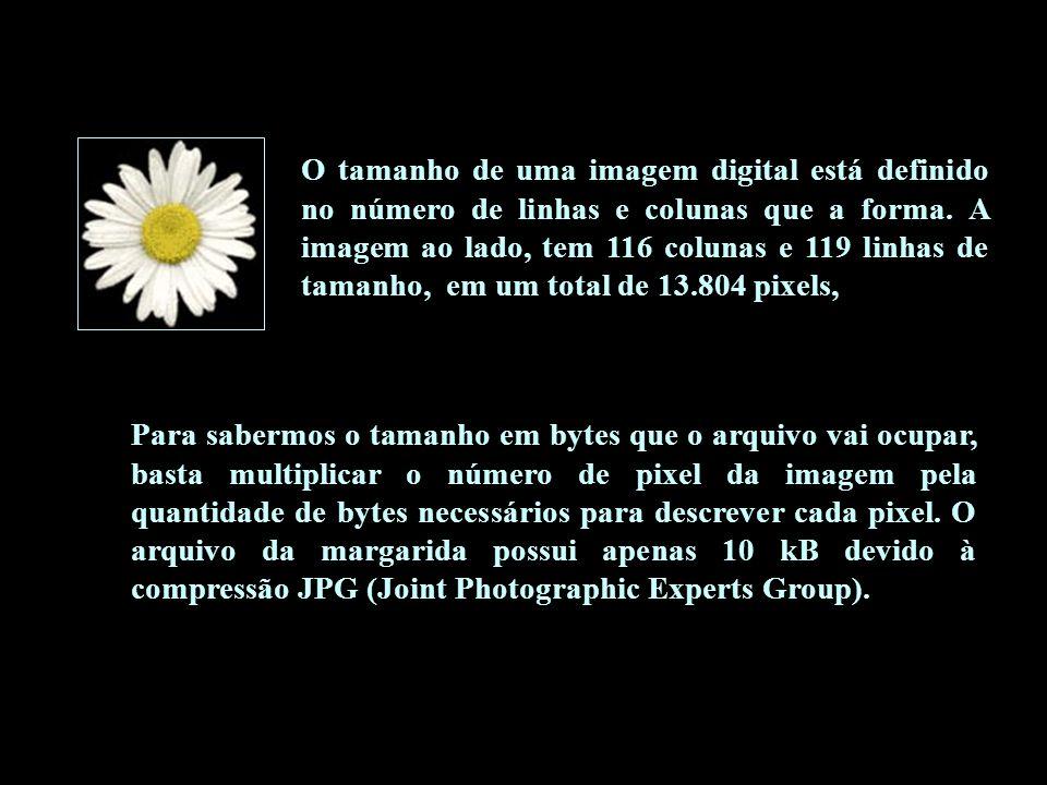PRINCIPAIS TIPOS DE COMPRESSÃO DE IMAGENS tiposcaracterísticasutilização GIF Graphics Interchange Formato leve que não existe perdas, com padrão de cores limitado a 256, pode armazenar mais de uma imagem no arquivo animação em internet.